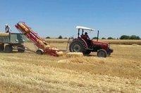 Analiz – Türkiye'de tarımın temel sorunları kalıcı mı?