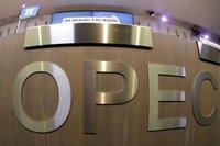 OPEC üretimi azaltırsa 3 ülke muaf olacak