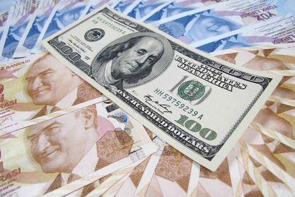 """Dolar/TL """"Merkez"""" açıklaması ile rekordan döndü - Dolar/TL, Rusya faiz indirimi sonrası rekor seviyeye çıktıktan sonra, TCMB açıklaması ile geriledi (16:50'de güncellendi)"""