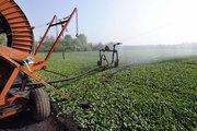 Tarımda 90 milyar $'lık Hollanda mucizesi