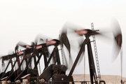 OPEC S. Arabistan'ın planını destekleyebilir