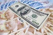 Ziraat Yatırım/Düzgün: Dolar/TL'de 2,89 gündeme gelebilir