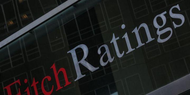 Fitch: ECB kararının etkisi sınırlı olur