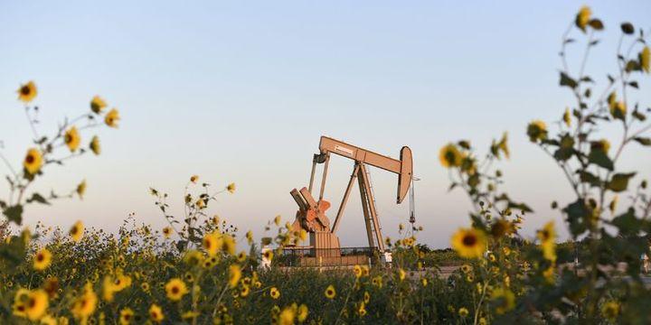 Petrol devleri iklim politikalarına karşı yılda 115 milyon dolar harcıyor