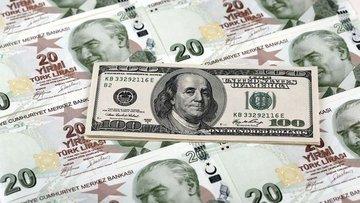 """Dolar/TL """"Davutoğlu"""" ardından 2.90'ın altına geriledi"""