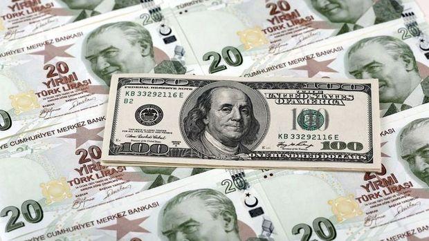 """Dolar/TL """"Yellen"""" öncesi 2.95'i aştı"""