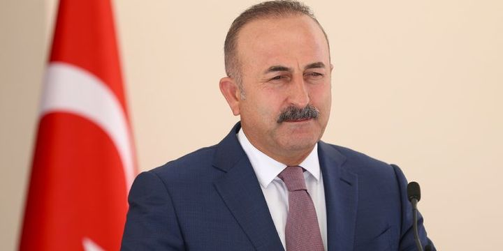Çavuşoğlu: Viyana Büyükelçisi