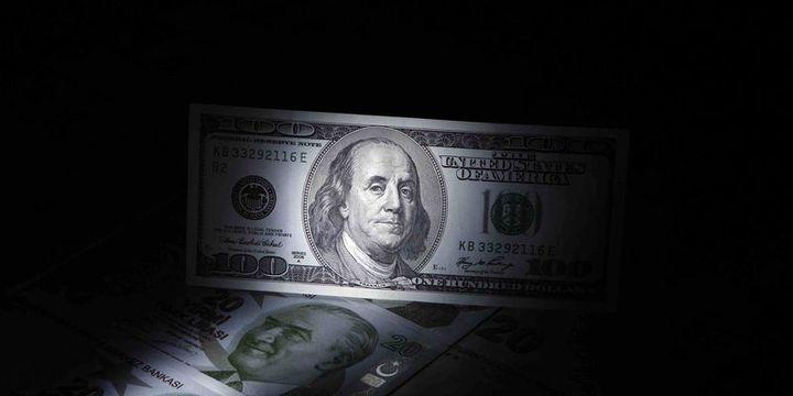 Dolar/TL 2.96