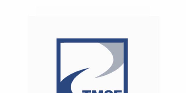 Yeni KHK ile kayyumların görevlerini TMSF yapacak