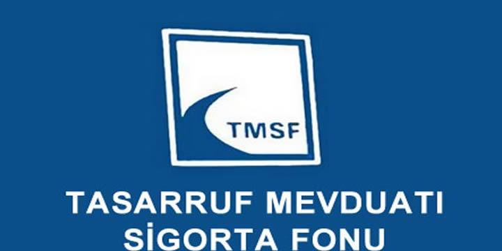 FETÖ bağlantılı şirketler TMSF
