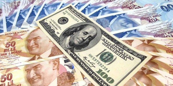 Dolar/TL 3.01