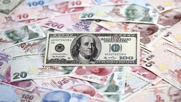 Dolar/TL tarihi rekor seviyesini yeniledi