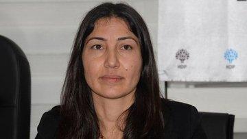 HDP Milletvekilleri Aydoğan ve Birlik de tutuklandı