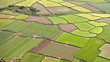 TZOB/Bayraktar: Ekim son yılların en kurak üretim sezonu ...