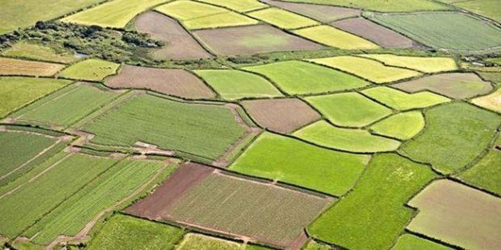 TZOB/Bayraktar: Ekim son yılların en kurak üretim sezonu başlangıcı oldu