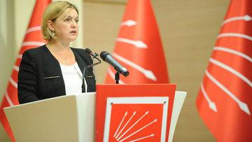 CHP/Böke: Türkiye Cumhuriyeti'ni güçlendirecek yasal düze...