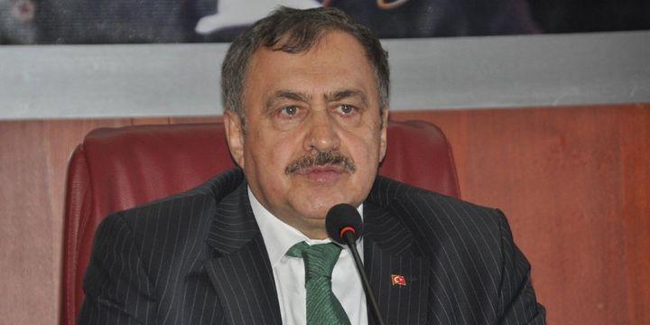 Veysel Eroğlu: 2017 yılında Türkiye küresel bir güç olacak