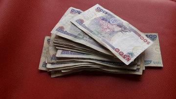 Afrika Nijerya ekonomisinin olası çöküşünü kaldıramaz