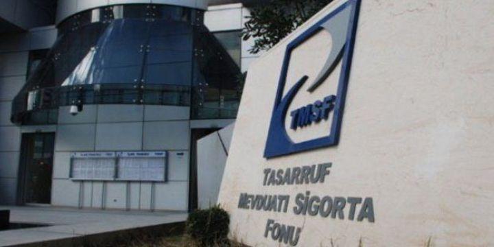 TMSF el koyulan şirketlerin satışı için danışman şirketleri belirledi