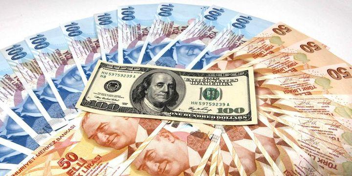 Yurtiçinde yerleşiklerin döviz tevdiat hesapları 450 milyon dolar azaldı