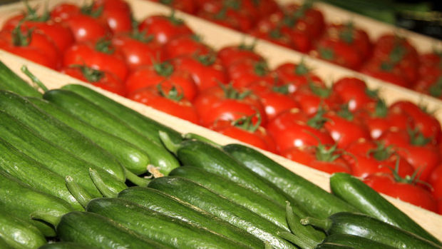 Tarım ve gıdada dış ticaret arttı