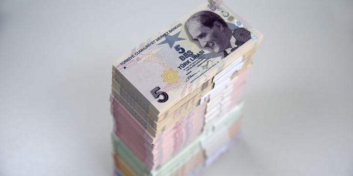 Dolar/TL 3.63