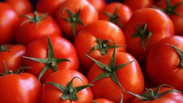 Ekonomi Bakanlığı'ndan Irak'ın domates kısıtlamasına iliş...