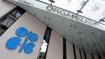 OPEC Delegesi: OPEC Komitesi kısıntının 9 ay daha uzatılm...