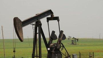 Turkuaz Petrol ve Türkiye Petrolleri'nden 100 milyon dola...
