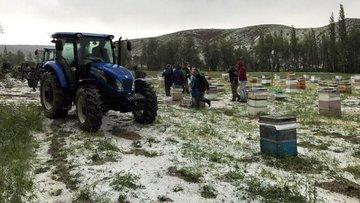 Sivas'ta şiddetli dolu 15 bin dekar buğday tarlasına zara...