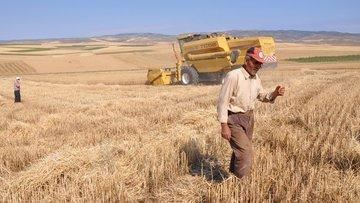 Tarım ÜFE Temmuz'da %2,28 azaldı