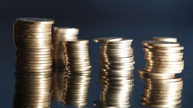 Tutanaklar sonrası gerileyen Dolar/TL hafif yükselişte