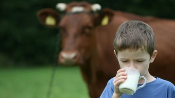 Çiğ süt referans fiyatı 10 kuruş arttı