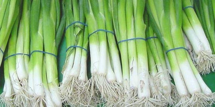 Eylülde en fazla yeşil soğanın fiyatı arttı