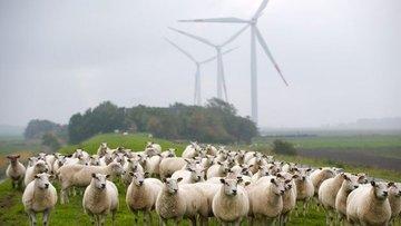 'Yenilenebilir enerji kapasitesi 2022'ye kadar yüzde 43 a...