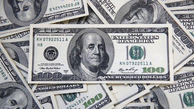 Yurt içi yerleşiklerin döviz mevduatı 809 milyon dolar azaldı