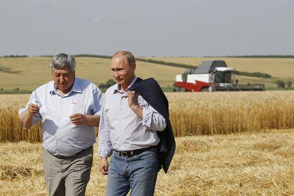 Rusya'nın gıda ihracatı silah ihracatını aştı