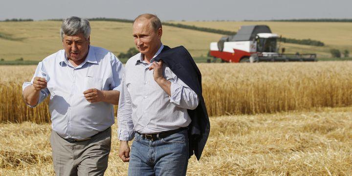 Rusya, tahıl hasadında tarihi rekoru kıracak
