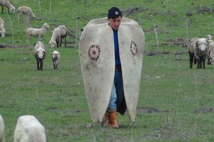 4 bin lira maaşa çoban bulunamıyor