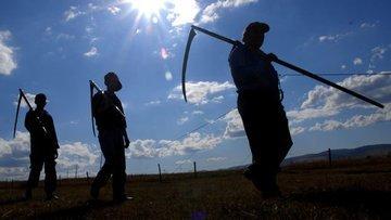 """""""Ekonomik eşitsizlik tarımla başladı"""""""