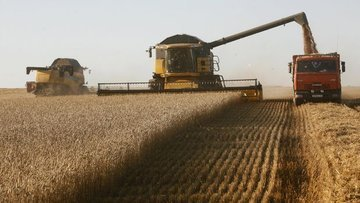 Rusya'nın tahıl ihracatı yüzde 29.5 arttı