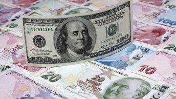 Dolar/TL rekorun ardından 3.95'e geriledi