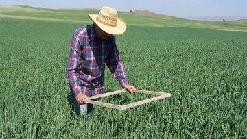 Tarımsal işletmelere 500 TL katılım desteği