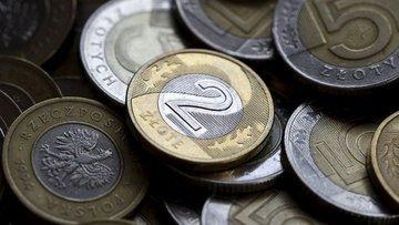 """Zloti'nin volatilitesi """"siyasi risk"""" ile yükseliyor"""
