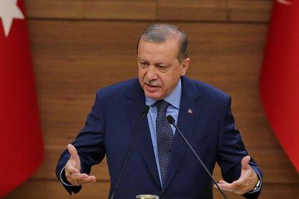 Erdoğan: Afrin operasyonu Suriyeli muhaliflerle...
