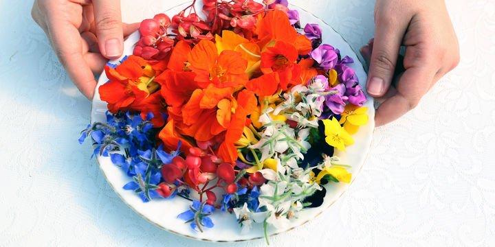 Sevgiliye yenilebilir çiçek