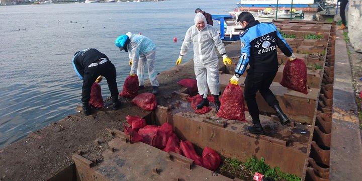 3 ton midye denize döküldü