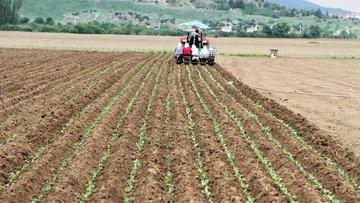 Tarım-ÜFE Şubat'ta arttı