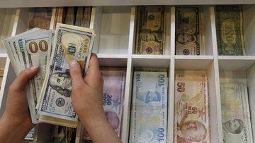 Dolar/TL yükseliyor, euro yeni rekor kırdı
