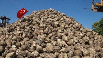 Pankobirlik'ten Türkşeker'in özelleştirilmesine yönelik a...